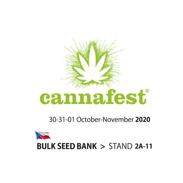 cannafest 2020