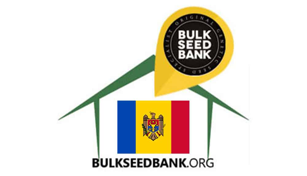 Moldova BSB