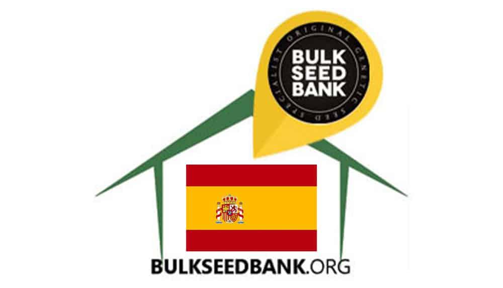 Spain BSB